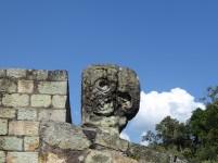Parrot's head at Copan Ruins